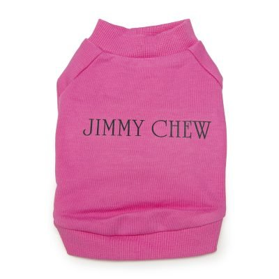 Jimmy Chew Pullover Front