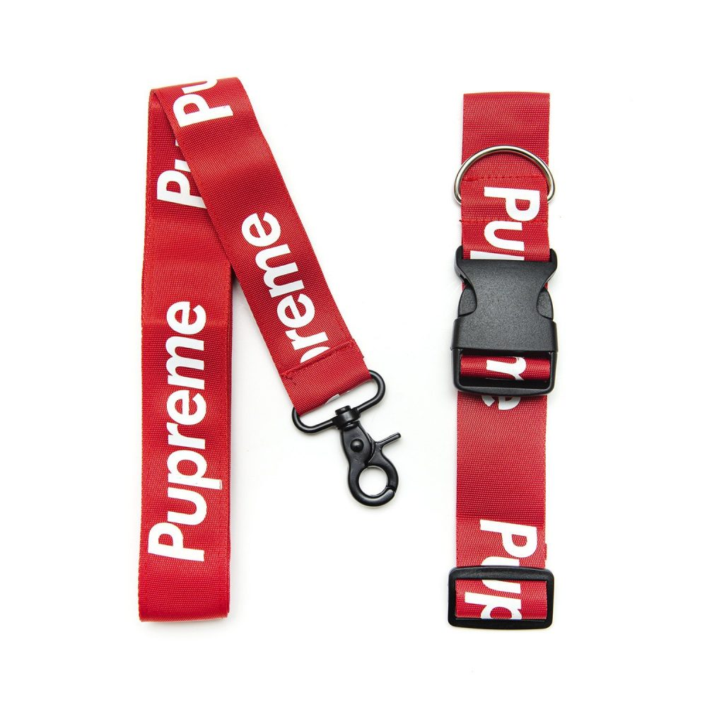 Pawpreme Collar & Leash