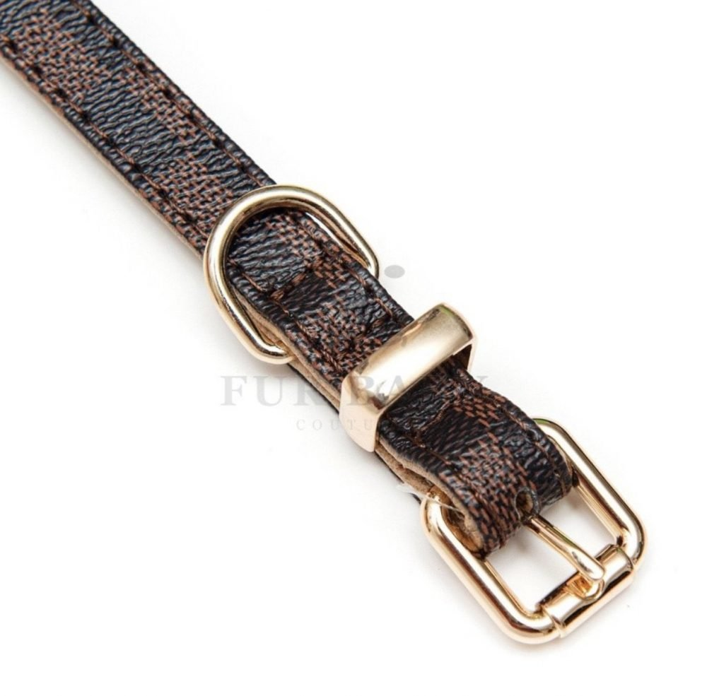 Pawtton Collar & Leash