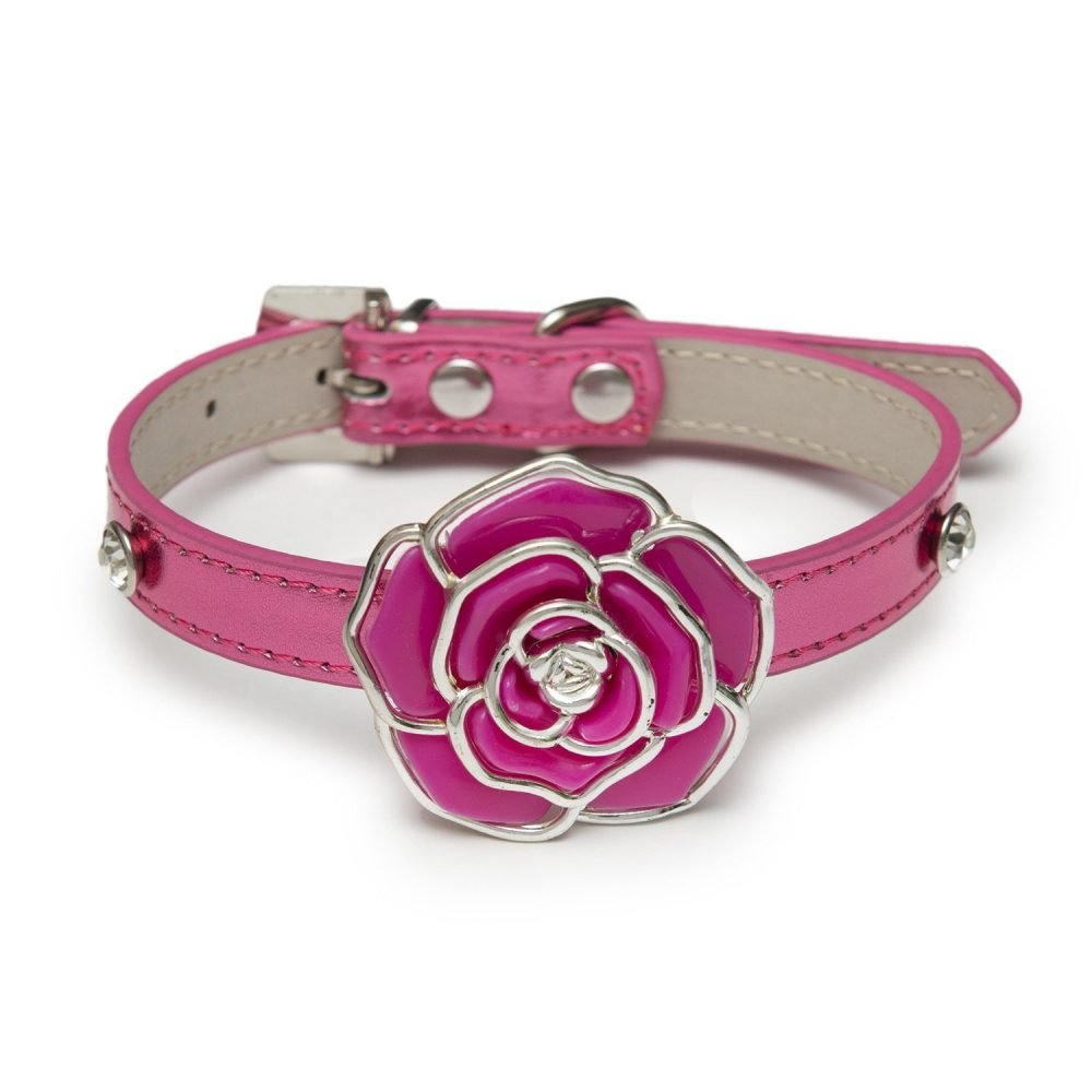 Coco Collar Pink
