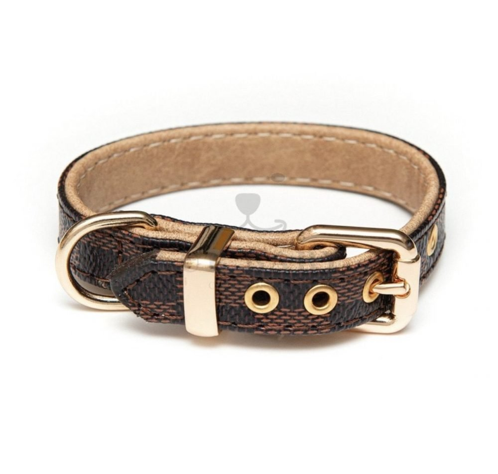Pawtton Collar & Leash S / Brown