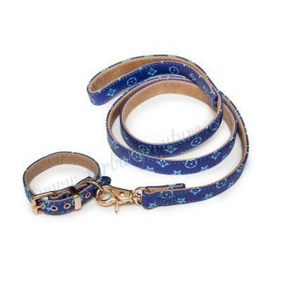 Love Me Collar & Leash Xs / Blue