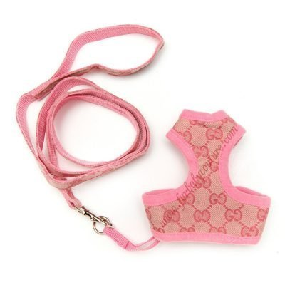 Bella Harness & Leash Xs