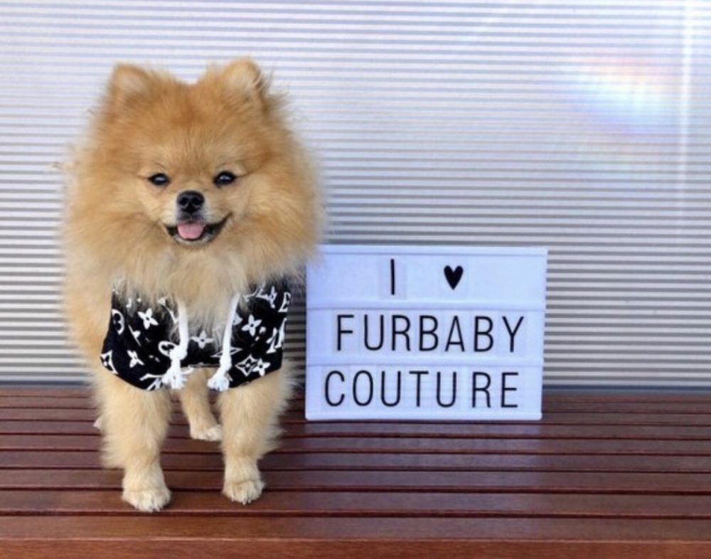 Love Me Hoodie - Furbaby Couture