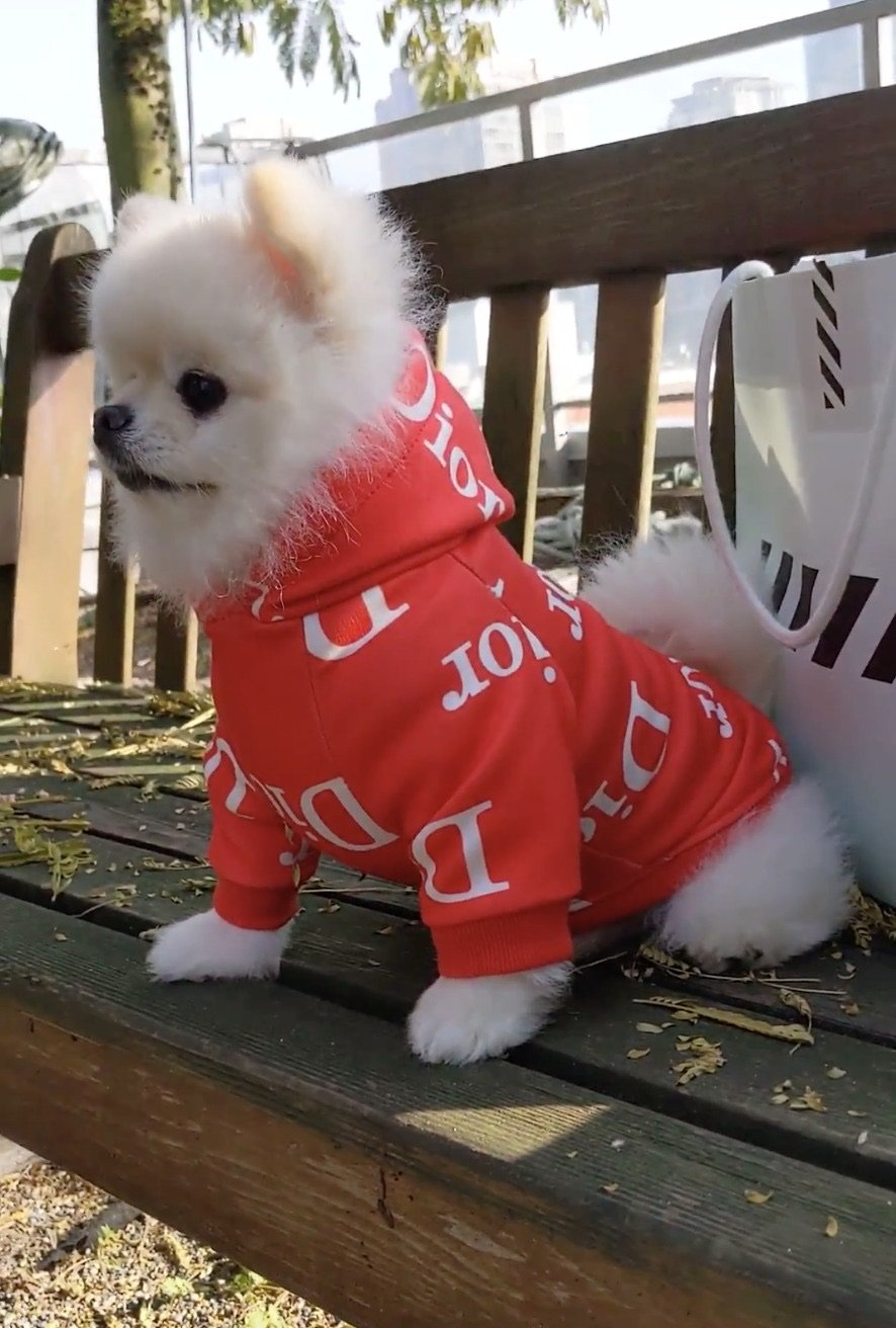 Dogior Red Hoodie