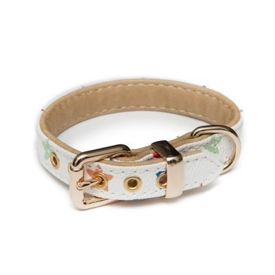 Multicolor Collar - Furbaby Couture
